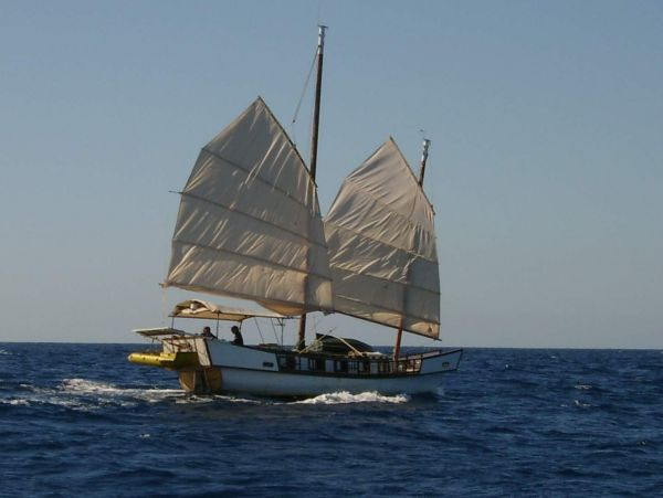 Chinese Junk rig and boat plans under 23 ft?