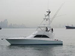 Viking 52' Convertible BR2453